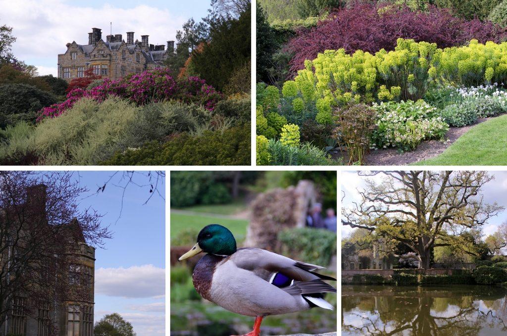 Англия весной - Scotney Castle