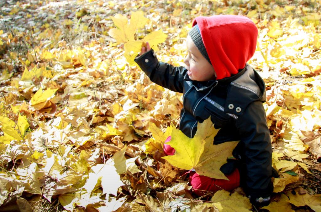 Осенняя медитация для детей