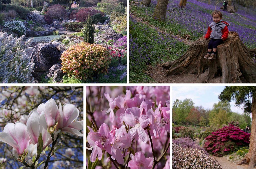Англия весной - Юго-восток - Emmets Gardens