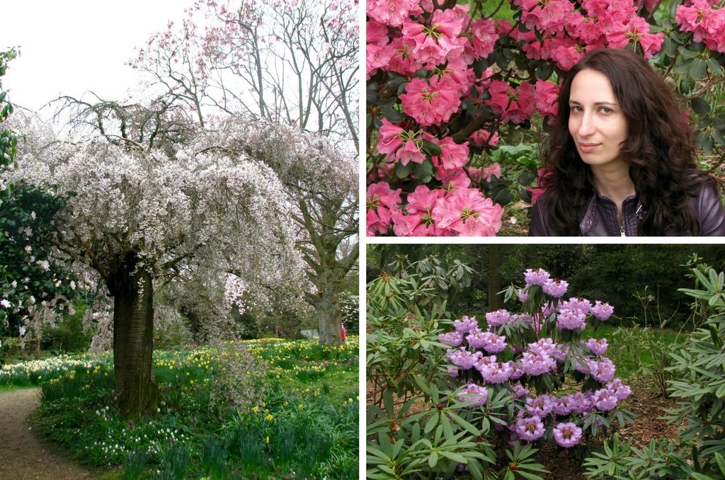 Англия весной - Nymans