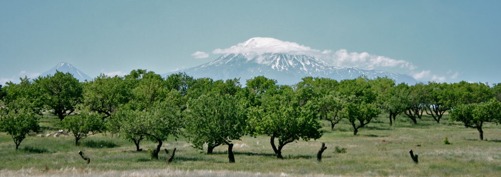 Art-On-Scarf-Armenia.-Ararat-1024x362